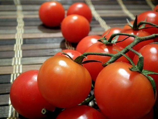 Тепличное хозяйство в Челябинской области выходит на уральский рынок