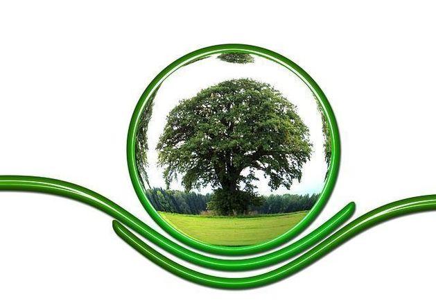 Челябинские бизнесмены предложили меры по улучшению экологической ситуации в городе
