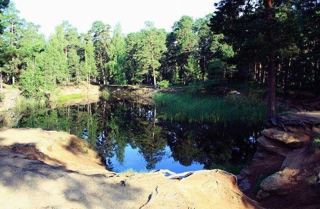 Власти Челябинска рассмотрят очередной проект застройки в парке Гагарина
