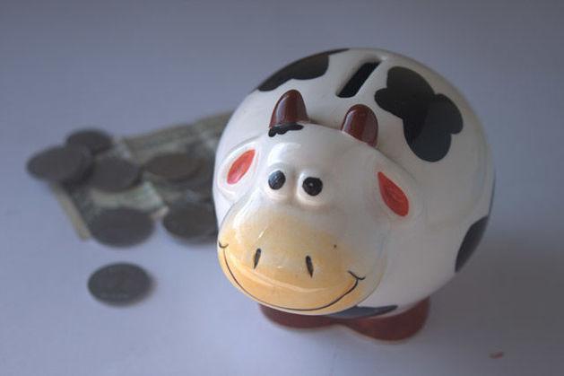 Челябинские бизнесмены рассказали о самых выгодных стратегиях инвестирования