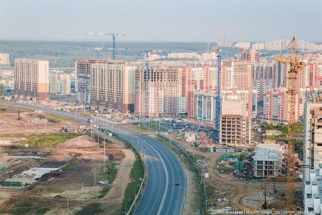 Челябинск просит КОТов. Почему в городе появляются зоны отчуждения