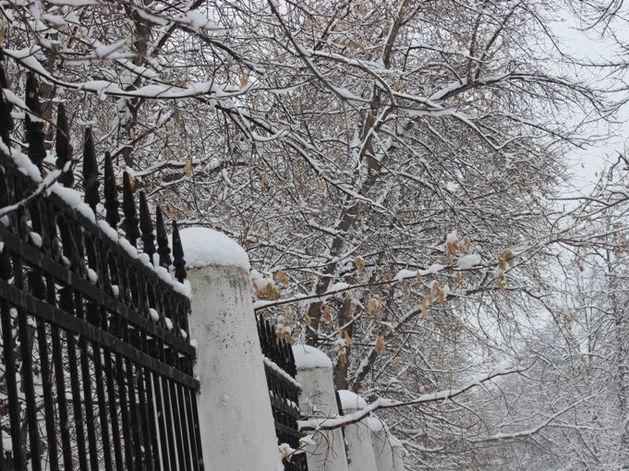 В Челябинске начало сбываться ноябрьское предсказание синоптика