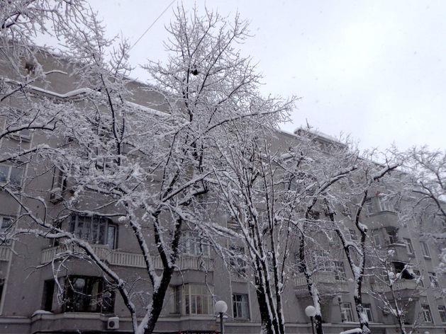 Челябинский синоптик дал прогноз погоды на новогоднюю ночь и январь