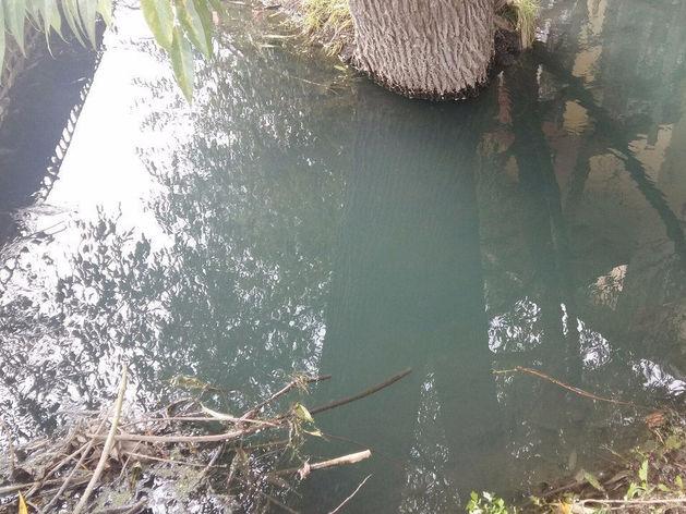Ярко-синего цвета стоки от челябинского предприятия попали в озеро Смолино