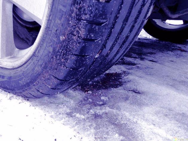 МЧС предупредило об опасности из-за мокрого снега и заморозков