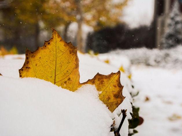 Синоптики спрогнозировали минусовые температуры и снег в Челябинске