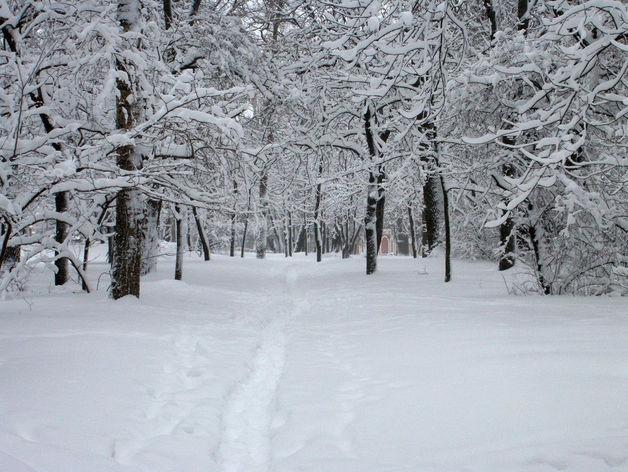 До -23 градусов похолодает в Челябинской области в выходные