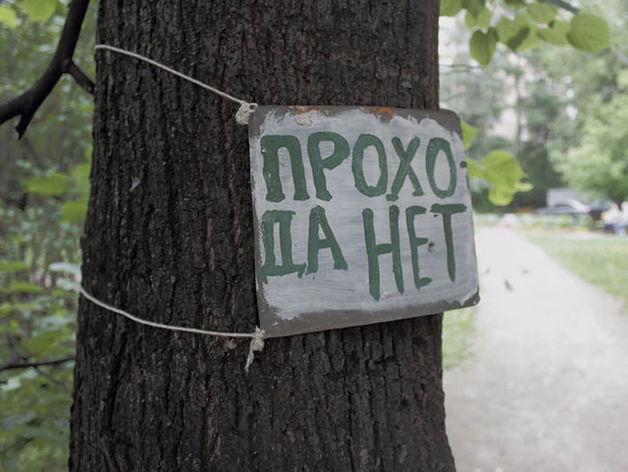 В Челябинске выявили массовые нарушения закона об охране природы