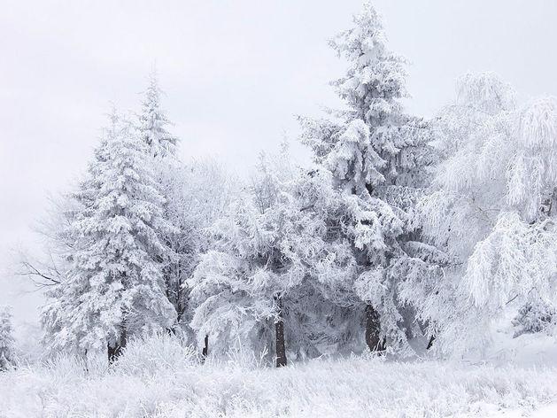 В новогодние праздники в Челябинске ожидаются метели