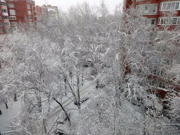 В Челябинской области в понедельник ожидается похолодание до -32°