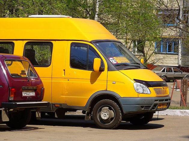 Дубровский запретил гастарбайтерам водить такси