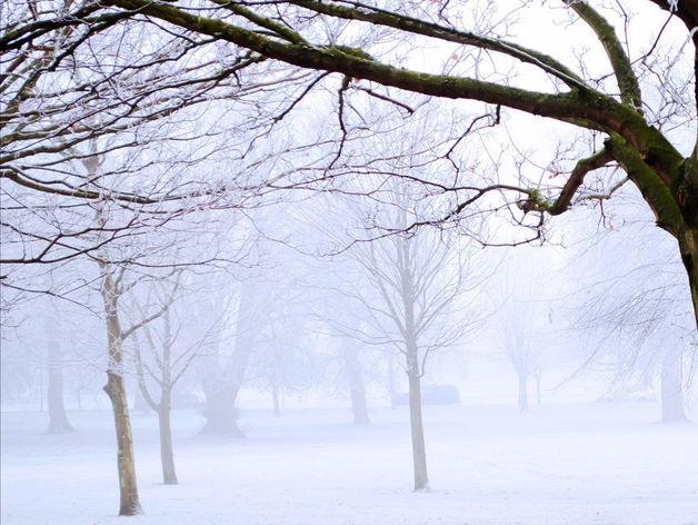 Угроза смога. В выходные в Челябинске ожидаются мороз и сильный ветер
