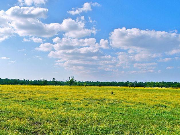 Земля в Челябинске резко подскочила в цене