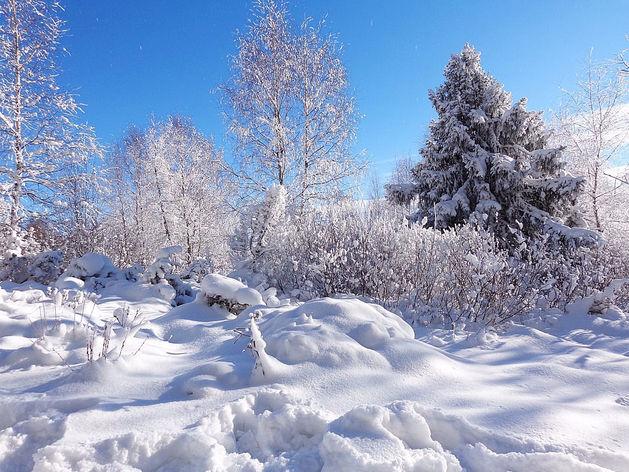 На следующей неделе в Челябинске ожидаются 30-градусные морозы