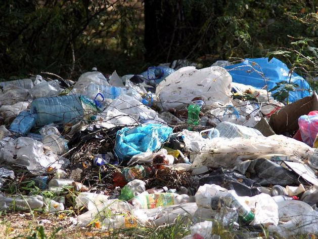ОНФ предлагает сделать «генеральную уборку» Челябинска с помощью смартфонов