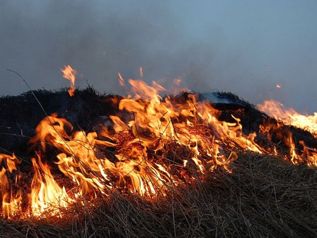 """В Челябинске """"Парковый"""" затянут дымом от подожженной травы"""