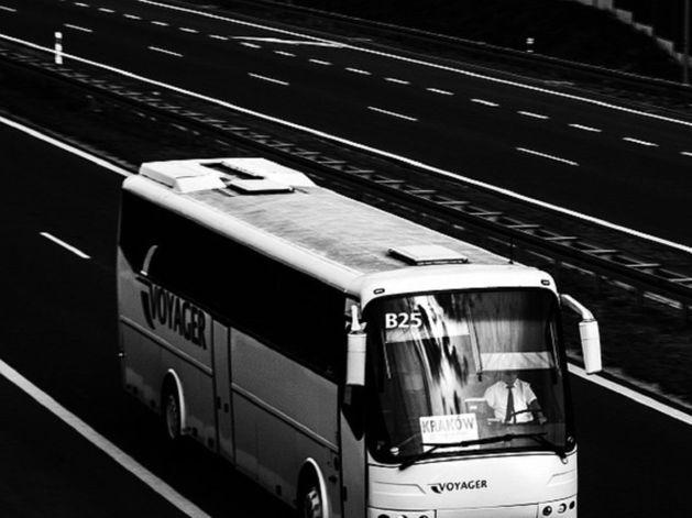 В Челябинской области погибла женщина-водитель, протаранившая рейсовый автобус