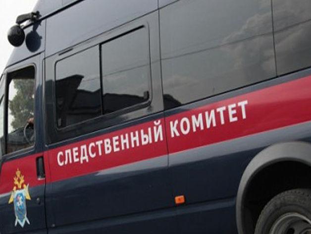 В Челябинской области найдены тела убитых матери и дочери