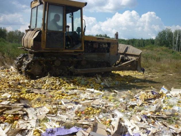 В Челябинске назвали вес продуктов, уничтоженных после «путинского» указа