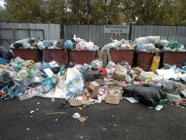 В Челябинске рассказали о сговоре компаний, из-за которых мог случиться мусорный коллапс