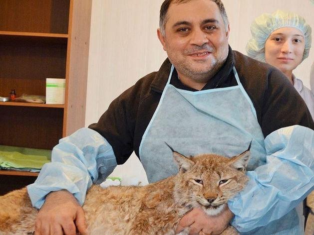 «Меры не принимаются!» В Челябинске известный зоозащитник написал письмо Евгению Тефтелеву