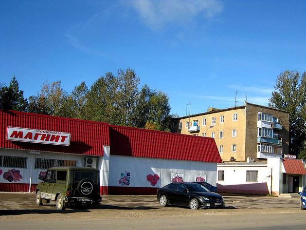 В Челябинской области запретили открывать новые «Магниты» и «Пятерочки»