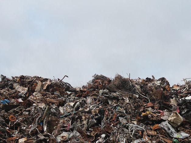 Верховный суд РФ постановил закрыть мусорный полигон в Полетаево