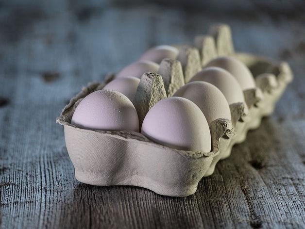 Возьмутся за яйца: челябинские птицефабрики проверят после жалоб «Пятёрочки»