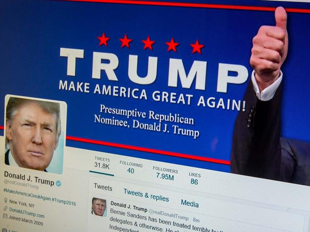 Студентка ЧелГУ получила стипендию Оксфорда за изучение страницы Трампа в Twitter