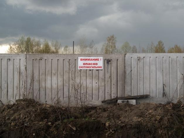В Челябинской области выявили 16 необустроенных скотомогильников с сибирской язвой