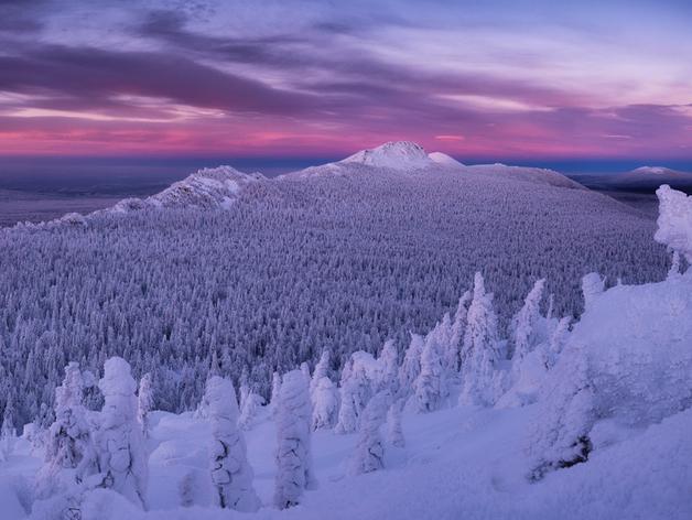 Справка об отсутствии COVID и толстый кошелек: новогодний отдых на Южном Урале