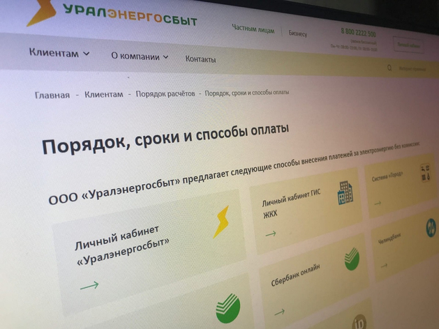 Челябинскому бизнесу предложили оплачивать счета за электроэнергию онлайн