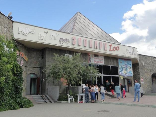 Директора челябинского зоопарка оставят в должности после протестов коллектива