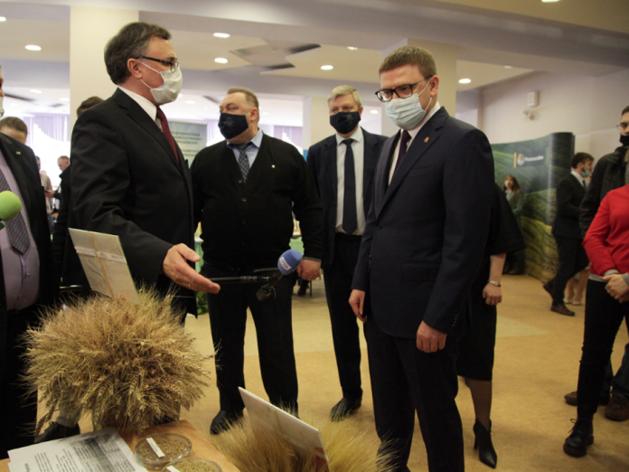 Субсидии для аграриев почти на 500 млн руб.: Текслер подписал постановление о выплатах