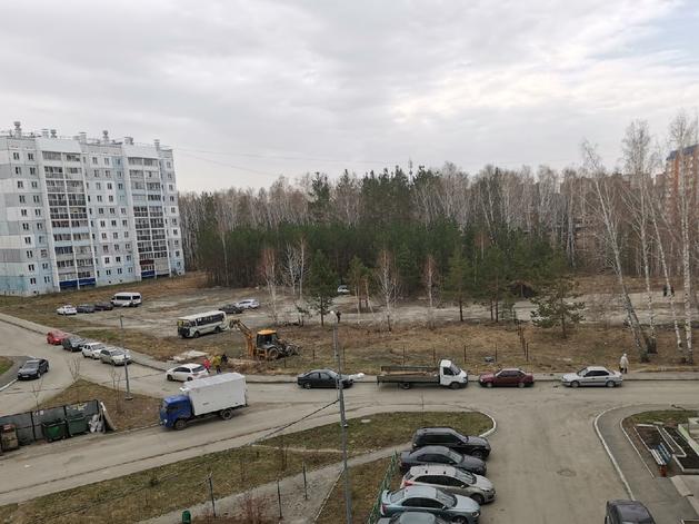 Мэрия Челябинска объяснила, зачем в микрорайоне «Парковый» валят деревья