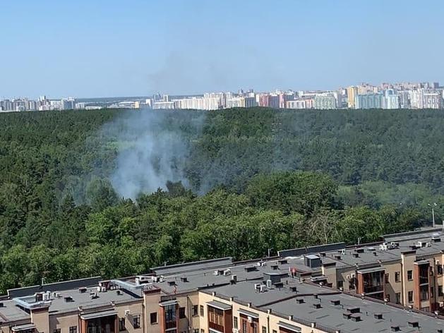 В Челябинске второй день подряд горит городской бор
