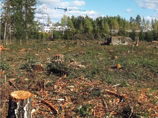 Алексей Наговицын начал строительство крупного объекта в Центральном районе Челябинска