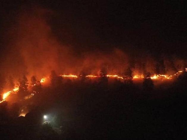 В Челябинской области объявлен режим ЧС: горят южные районы