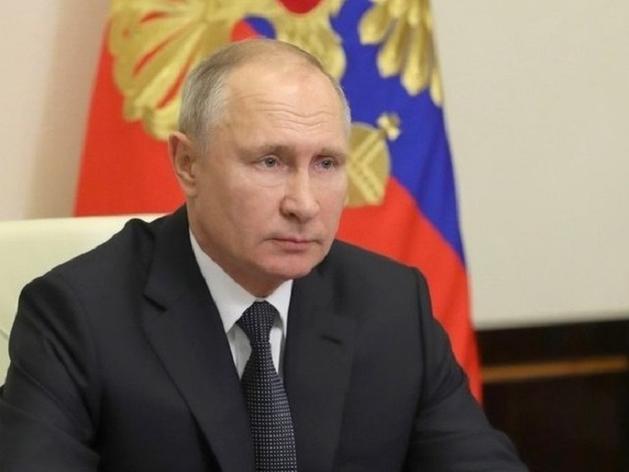 Челябинцы обратились к Владимиру Путину с просьбой остановить вырубку деревьев
